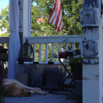 Sonny on the porch