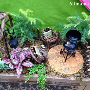 Creative fairy garden containers - Fairy garden containers for sale ...