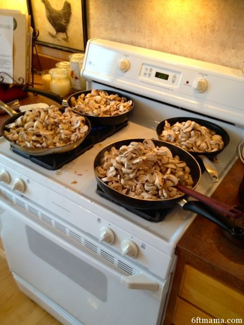 Beef Stroganoff Mushrooms