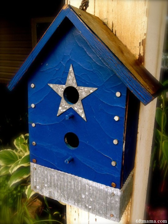 Texas Blue Birdhouse