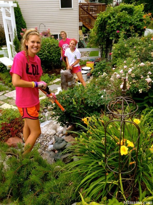 Kendall, Hannah, and Wendy are about to remove the Forsythia