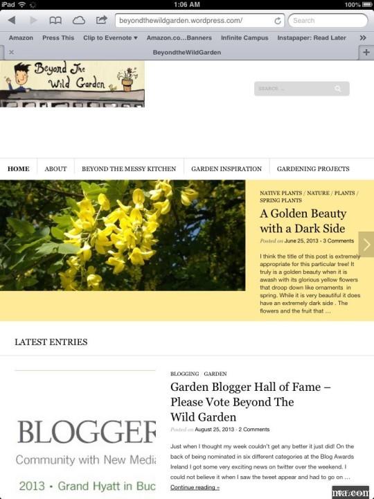 The Best Garden Bloggers 2013 Beyond the Wild Garden