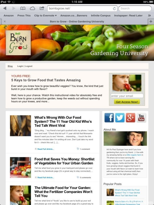 The Best Garden Bloggers 2013 Born to Grow