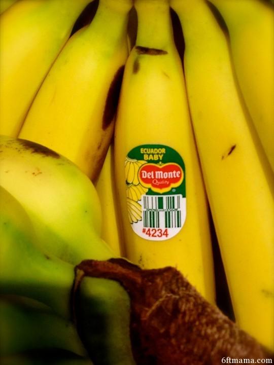 Ecuador Baby Banana