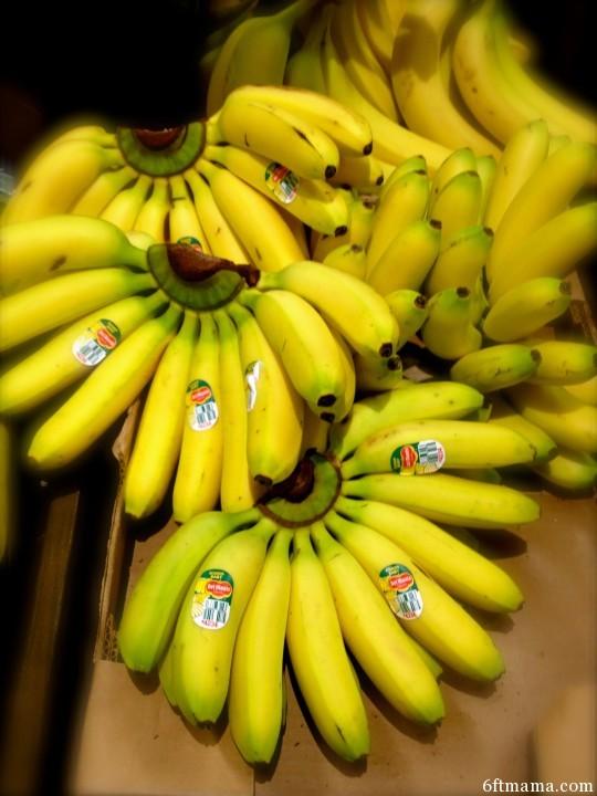Ecuador Baby Bananas