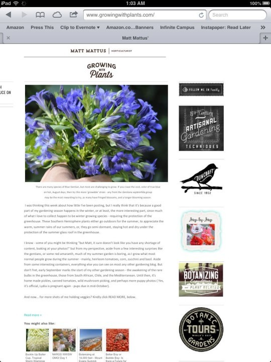 The Best Garden Bloggers 2013 Growing with Plants