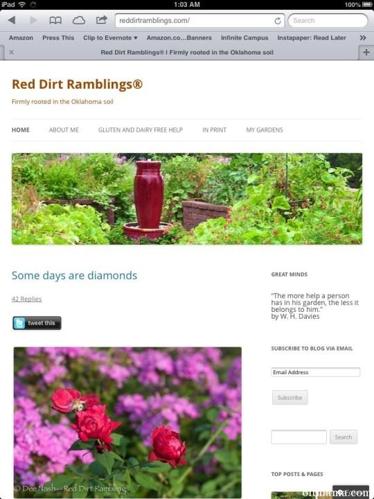 The Best Garden Bloggers 2013 Red Dirt Ramblings