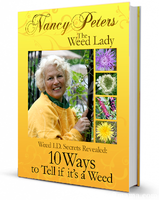 Nancy Peters The Weed Lady