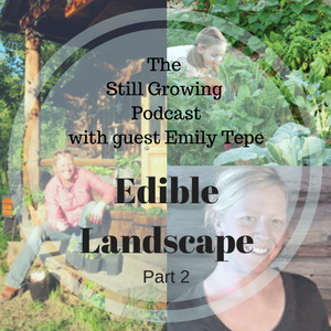 Edible Landscape with Emily Tepe Part 2