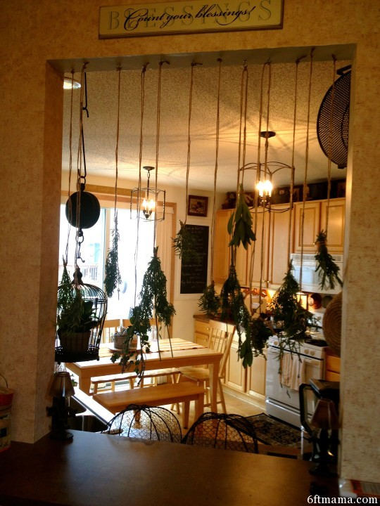 Hang Them Upside Down to Dry Preserving the Herb Harvest