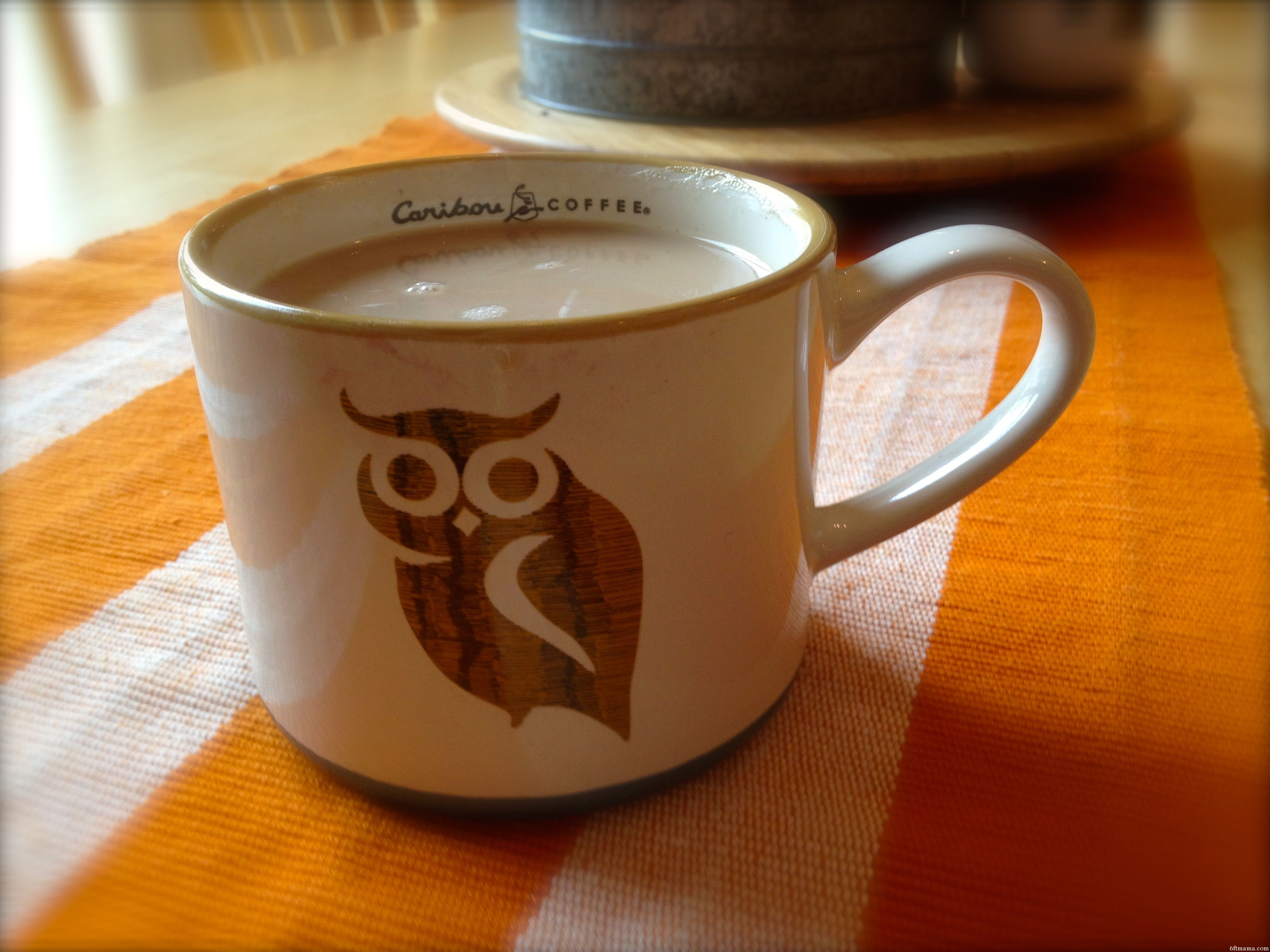 Owl Mug 6ftmama
