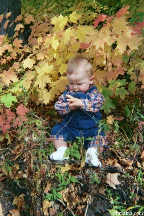 September 2000 Baby Will