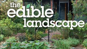 Emily Tepe The Edible Landscape
