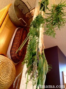 Hanging Herbs to Dry
