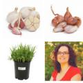 Sarah Griffin Boubacar Cover Crops, Shallots, & Garlic