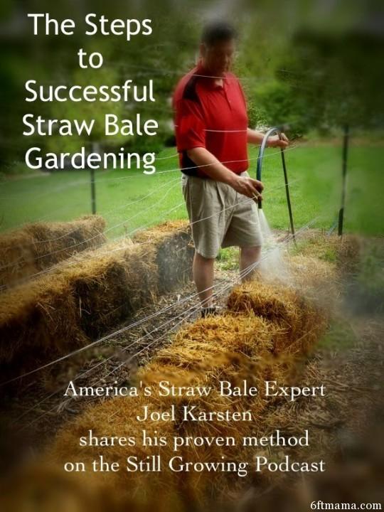 Straw Bale Gardening 6ftmama