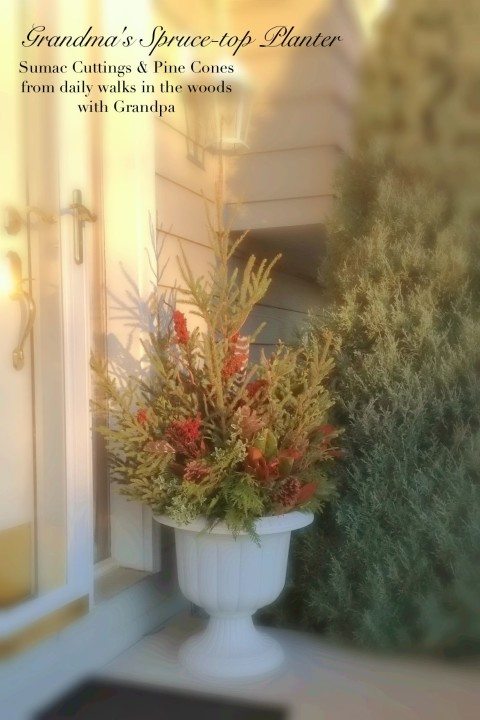 Grandma's Spruce Top Planter