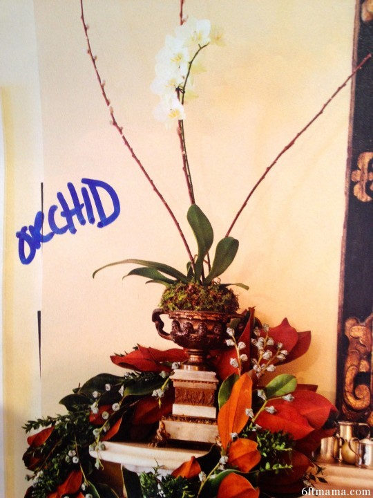 Urn and Orchid 6ftmama.com