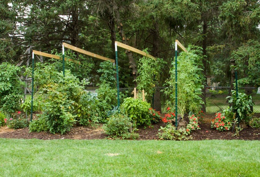 Grow your vegetables in straw bales this summer ocean city nj patch for Straw bale gardening joel karsten