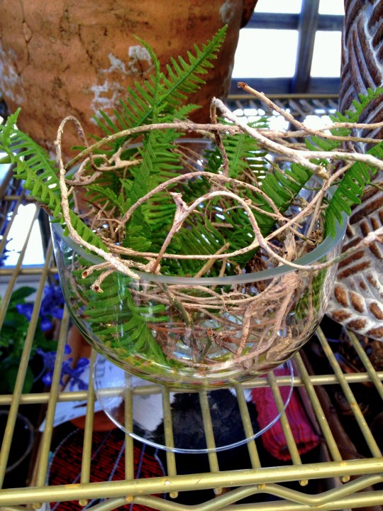 Simple Fern Votive 6ftmama.com