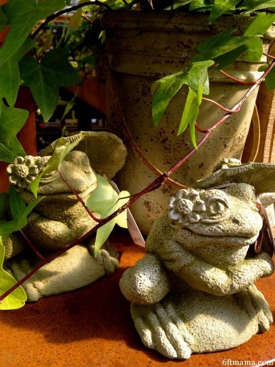 Spring Frogs 6ftmama.com
