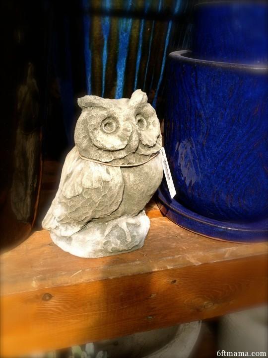 Stone owl 6ftmama.com