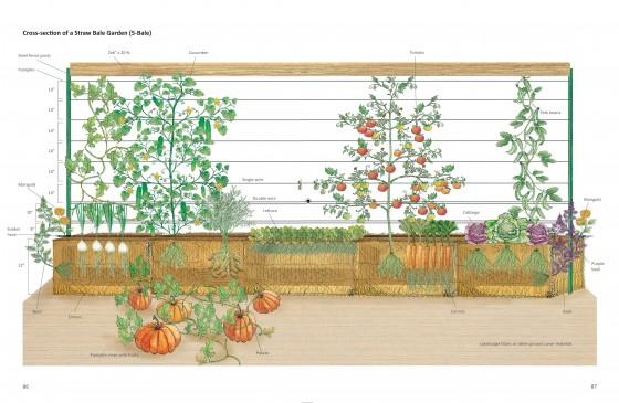 Straw Bale Garden Trellis System 6ftmama.com