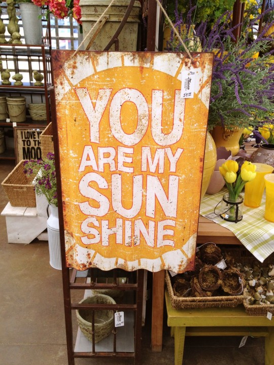 Sunshine Sign 6ftmama.com