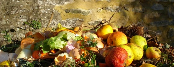 food waste 6ftmama.com
