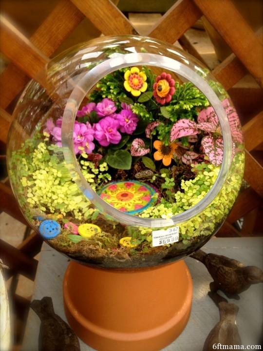 glass globe clay pot kingdom 6ftmama.com