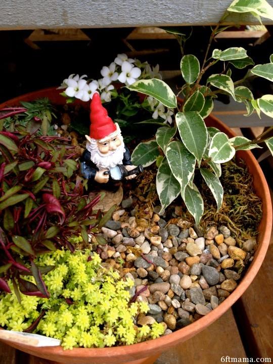 gnome clay pot kingdom 6ftmama.com