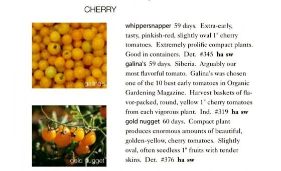 Cherry Tomatoes Seeds Trust 6ftmama.com