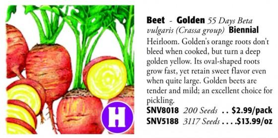 Golden Beet 6ftmama.com