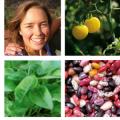 Julia Coffey & The Seeds Trust Catalog