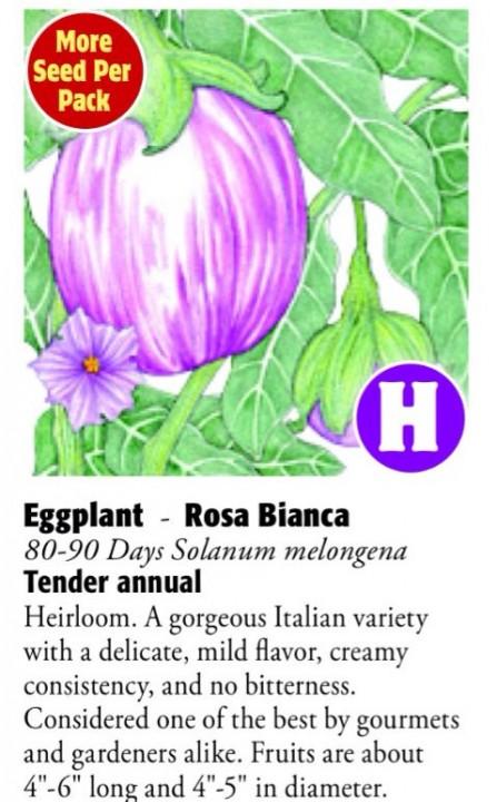 Rosa Bianca Eggplant 6ftmama.com