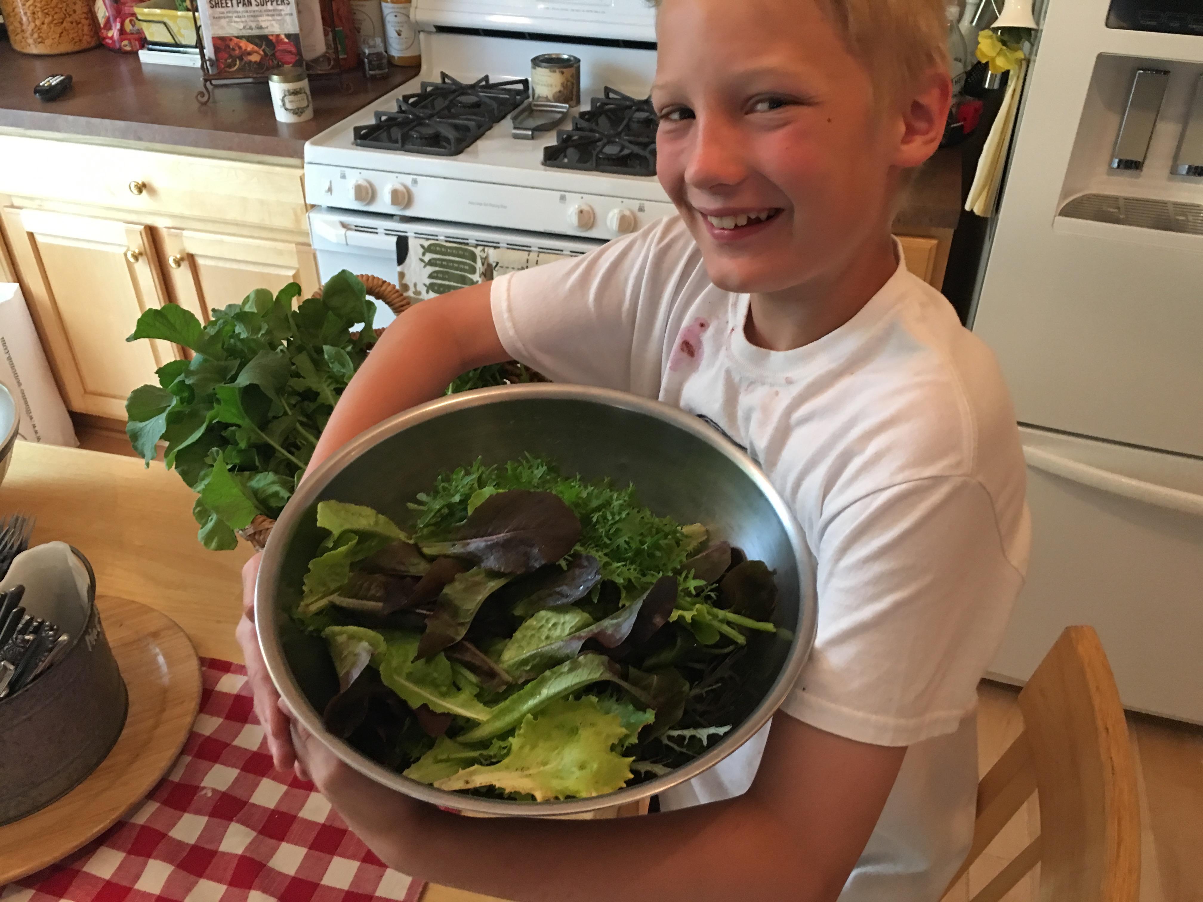 John harvesting lettuce and salad greens for supper 6ftmama blog