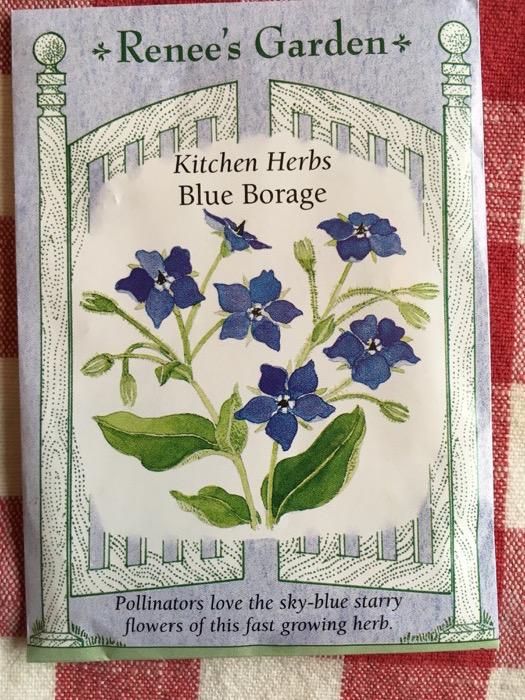 Blue Borage Renee's Garden