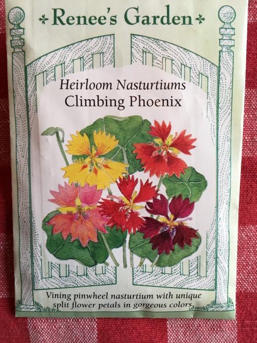 Climbing Phoenix Heirloom Nasturtiums Renee's Garden