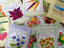 Seed Packets from Renee's Garden