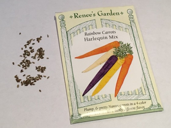 Seed from Harlequin Mix Rainbow Carrots Renee's Garden