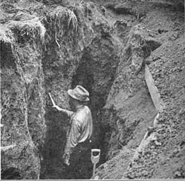 Dr. John Weaver excavating-roots 6ftmama blog Still Growing Podcast
