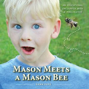 Mason Meets a Mason Bee by Dawn Pape Guest on the Still Growing Gardening Podcast 6ftmama blog