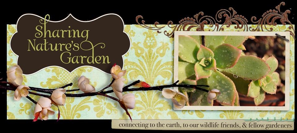 sharing-natures-garden-on-the-still-growing-gardening-podcast-6ftmama-blog