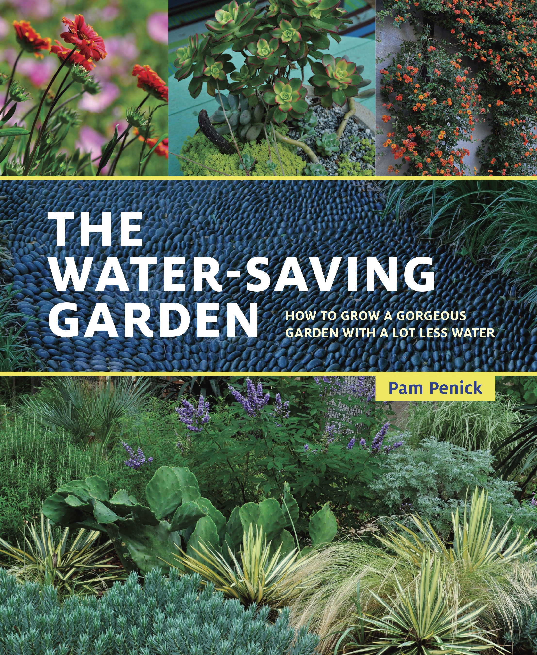 SG555 How to Grow a Gorgeous Garden Using Less Water with Pam