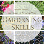 Amp Up Your Gardening Skills (5 Ways You Can Get Started Today)