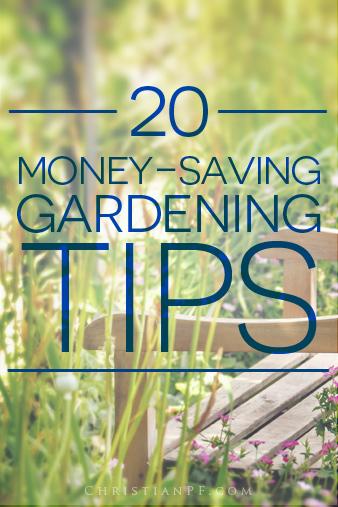 budget-gardening-tips