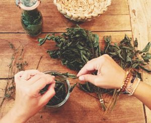 Grow Your Own Apothecary with Herbalist Jodi McKee