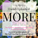 I Wish I planted More on the the Still Growing Gardening Podcast 6ftmama blog (1)