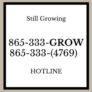Still Growing Hotline (1)