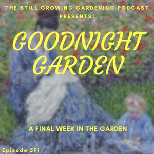 SG591: Goodnight Garden - A Punch List for the Final Week in the